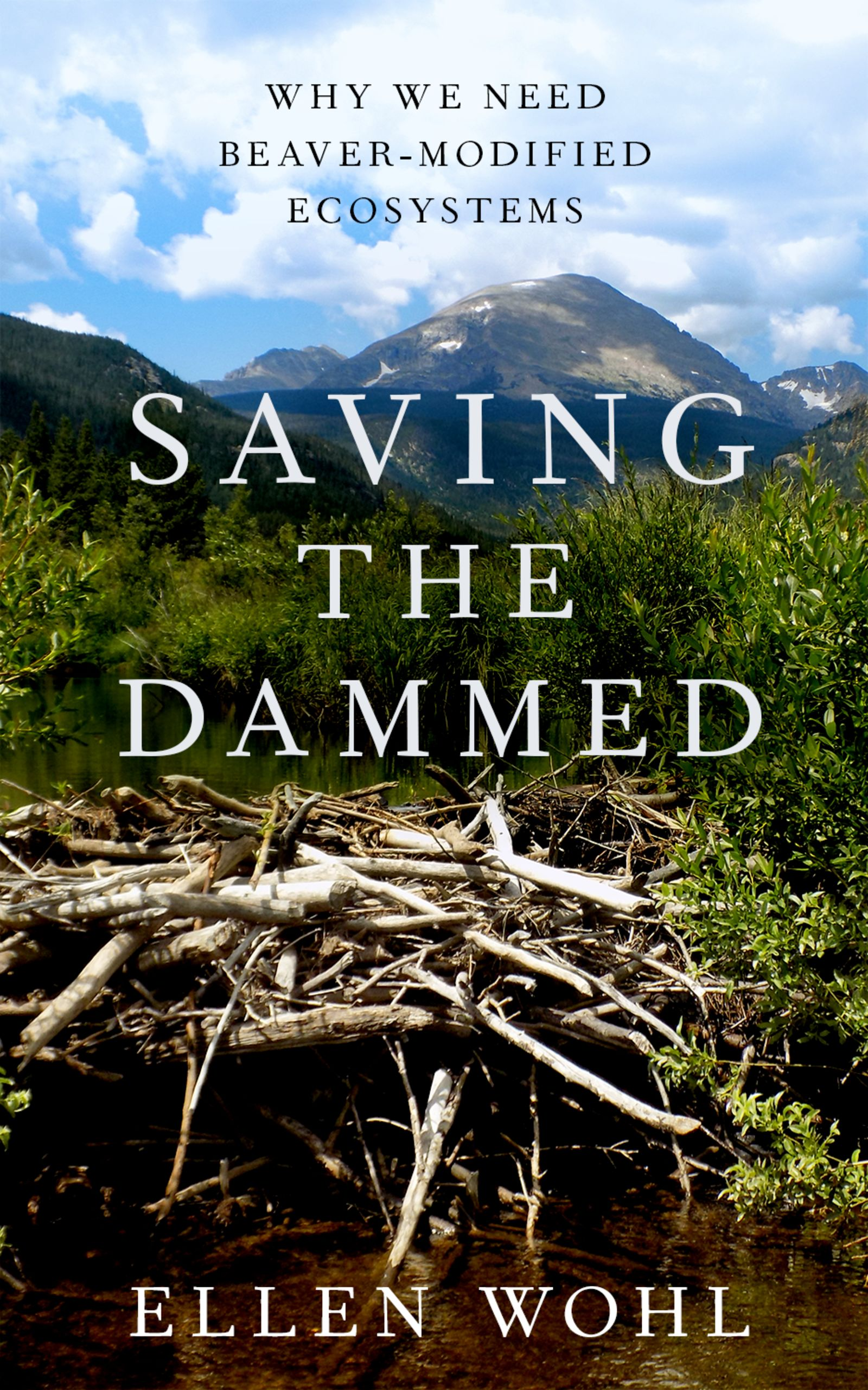Saving the DammedWhy We Need Beaver-Modified Ecosystems