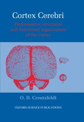 Cortex CerebriPerformance, Structural and Functional Organisation of the Cortex