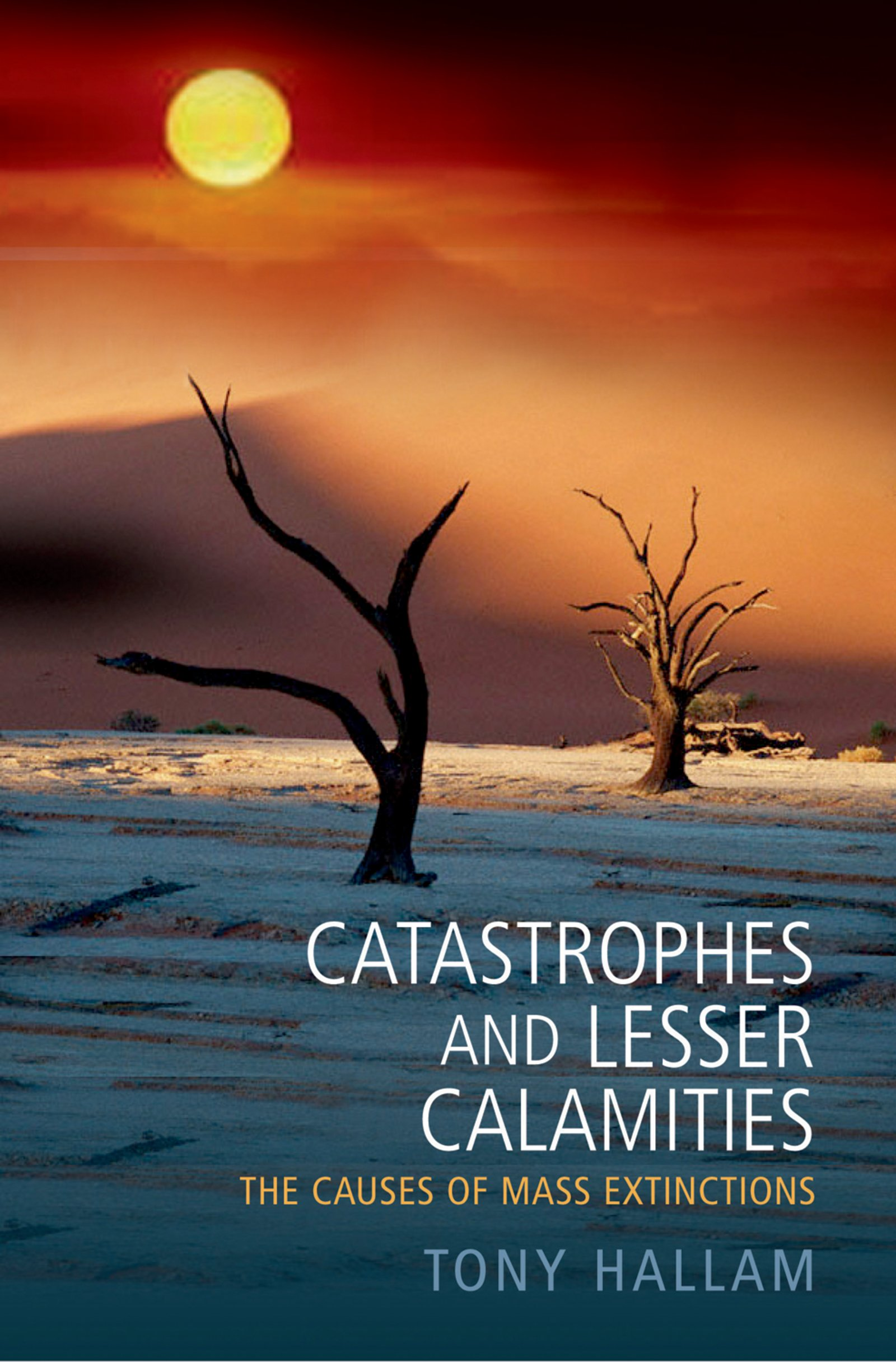 Catastrophes and Lesser CalamitiesThe causes of mass extinctions