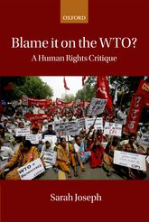 Blame it on the WTO?A Human Rights Critique