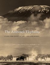 The Amboseli Elephants: A Long-Term Perspective on a Long-Lived Mammal