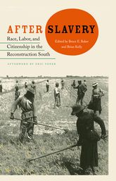 After SlaveryRace, Labor, and Citizenship in the Reconstruction South
